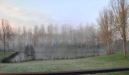 Brume matinale du balcon